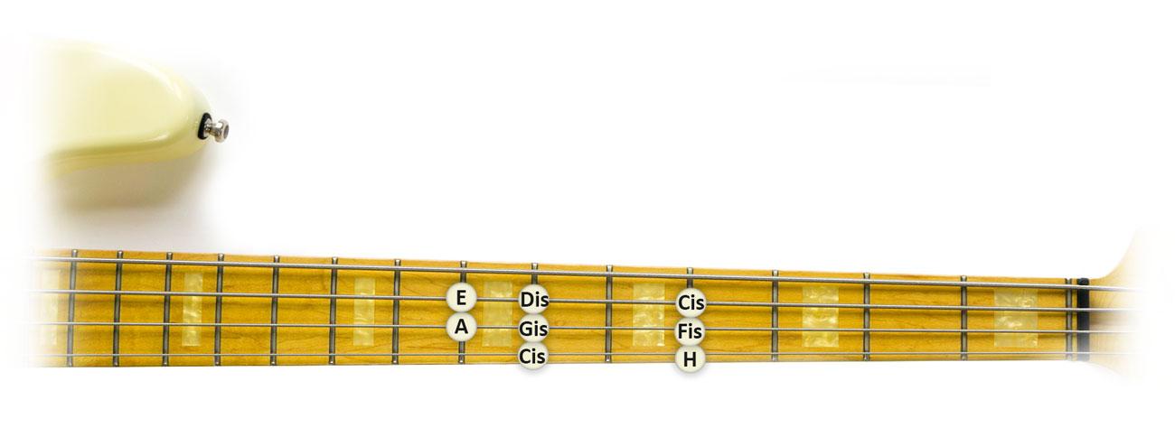 Cis-Moll-Tonleiter-Bass-Griffbrett